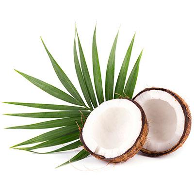 MSCPI-Coconuts