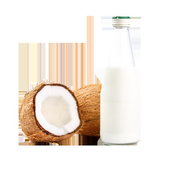 MSCPI-Philippine-Coconut-Milk