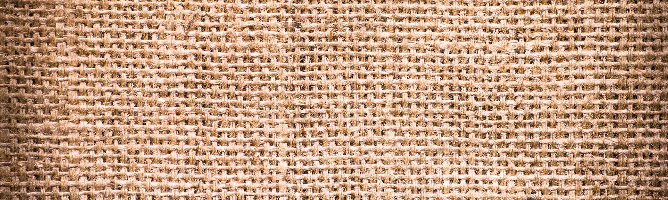 Coconut-Philippines-Sack